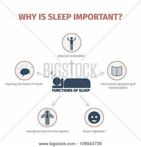 Sleep infographic. Mind map