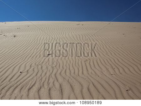 Sand Dune With Wind Patterns And Blue Sky