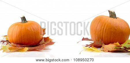 Decoration Of Pumpkins With Autumn Leaves For Thanksgiving Day On White