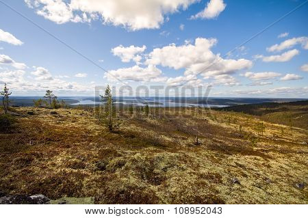 Mountain Tundra In Lapland