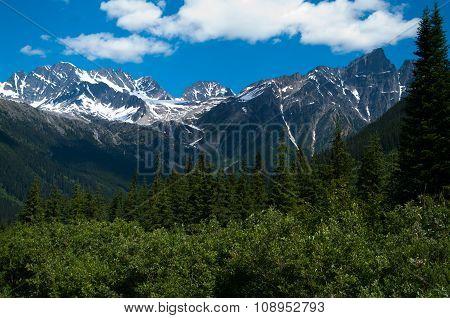 Mts At Rogers Pass