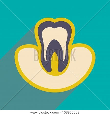 Icon of tooth gums in flat style