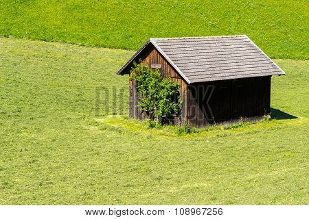 Tool Shed In A Green Meadow