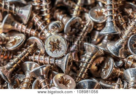 Macro Of A Collection Of Screws 1