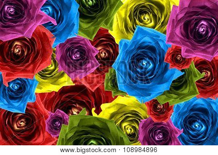 Mix Collage Of Rose Flowers Rainbow Background: Red, Violet, Rose, Orange, Green, Blue, Yellow