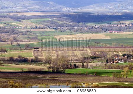 Sunny Agricultural Landscape With Hills