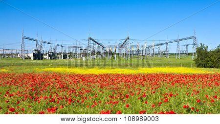 Power Plant In Beautiful Flower Meadow