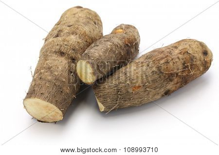 yam isolated on white background