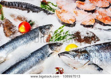 fish on ice