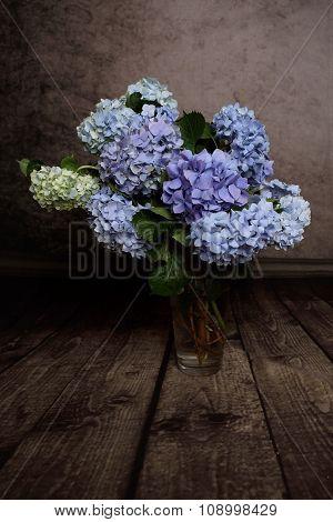 Hydrangeas In Vase Springtime