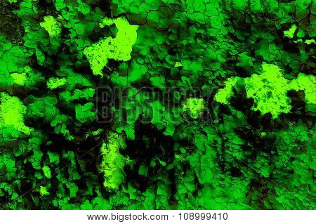 Color abstract background and desert crackle green color
