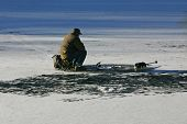 foto of bluegill  - the ice fisher sitting and waiting for his catch - JPG
