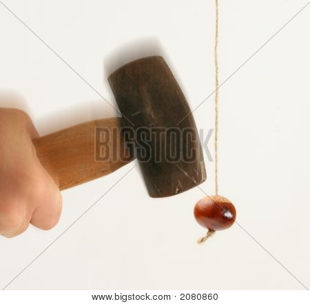 Hammer To Crack A Nut Conkers