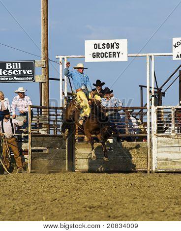Cowboy rides a bucking horse at rodeo