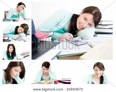 Collage de una mujer joven estudiando