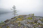 Fog Over The Ladoga Lake. Karelia, Russia. poster