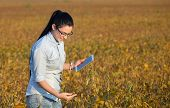 Farmer Girl With Tablet In Soybean Field poster