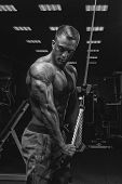 Black And White Portrait Of Handsome Athletic Bodybuilder Doing Pushdown Rope Attachment Workout. Sh poster