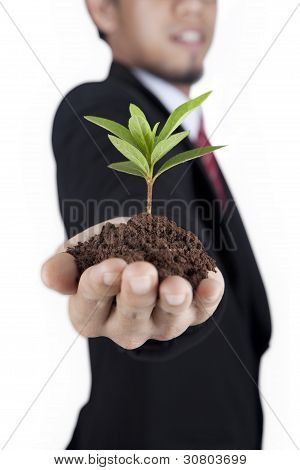 Growing Green Business