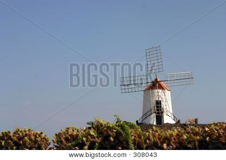 Spanish Windmill