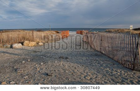 Ocean Beach 4232
