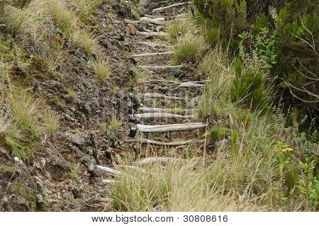 Way To The Top Of Muhavara Vulcano