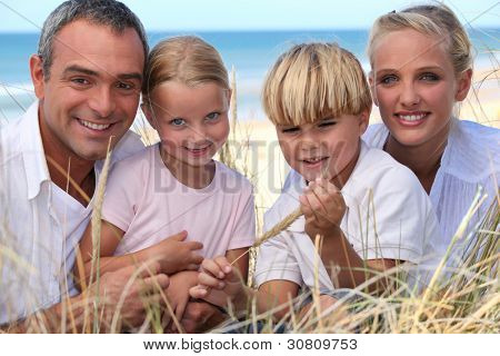 Family spending the day by the seaside