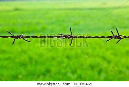 The Sharpen Barbed Wire