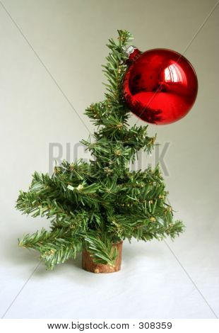 Oh Christmas Tree 2