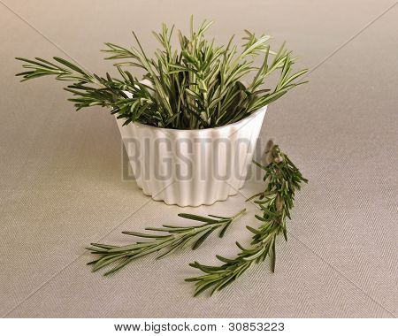Fresh Rosemary sprigs in a bowl, with selective focus.
