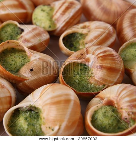 bourgogne snails with butter and parsley