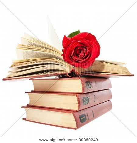 Red Rose On Open Book.