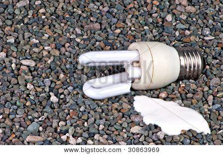 Broken CFL Bulb