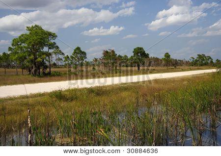 Turner River Road