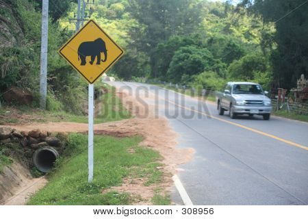 Warning For Elephants