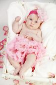 stock photo of newborn baby girl  - Portrait of a two months old baby - JPG