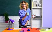 Smiling Teacher In Classroom. Young Female Teacher. Young Teacher In Glasses Over Green Chalkboard.  poster