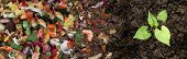 Compost And Composted Soil Cycle As A Composting Pile Of Rotting Kitchen Scraps With Fruits And Vege poster