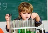 Chemical Analysis. Science Concept. Wunderkind Experimenting With Chemistry. Boy Test Tubes Colorful poster