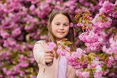 Kid Enjoy Cherry Blossom Sakura. Kid On Pink Flowers Sakura Tree Background. Allergy Remedy. Child E poster