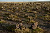 Laufskalavarda Lava Ridge And Stone Cairns, Iceland poster