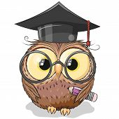 Cute Clever Owl With Pencil And In Graduation Cap poster