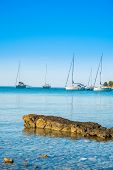 Anchored Sailing Boats And Yachts In The Morning In Blue Bay On Croatian Adriatic, Kosirina Beach On poster