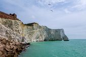 Looking Along The Cliff Face Of Seaford Head In Seaford, Sussex England, An Area Under Threat From E poster