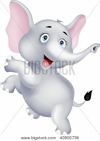 Funny elephant dancing