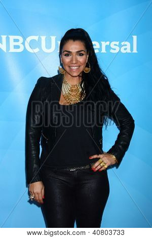 LOS ANGELES - JAN 7:  Asa Soltan Rahmati attends the NBCUniversal 2013 TCA Winter Press Tour at Langham Huntington Hotel on January 7, 2013 in Pasadena, CA