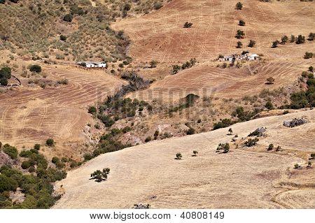 Plowed Fields In Andalucia