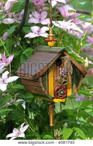 Wren Sitting On The Perch Of A Birdhouse