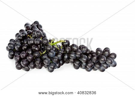 Cluster Of Black Grape Isolated On White Background