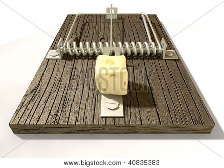 Mousetrap With Cheese Front